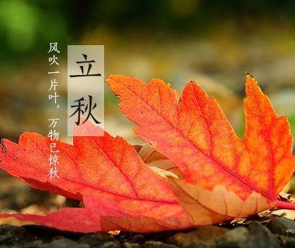 今日立秋 天气逐渐凉爽